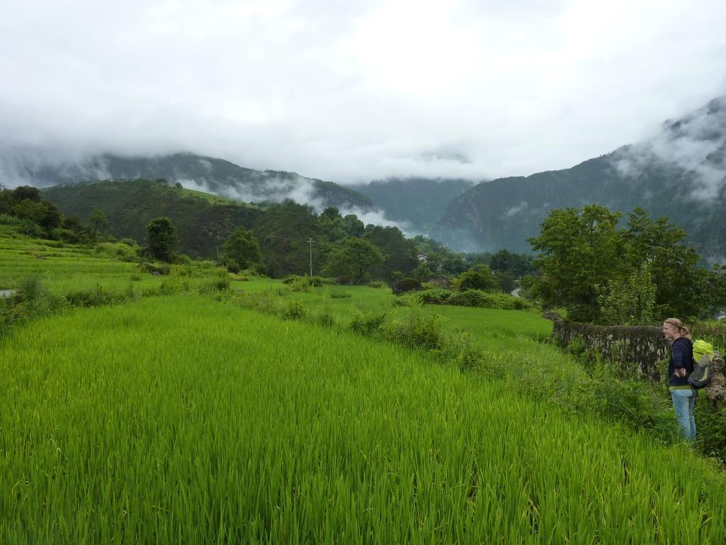 Trotz (oder gerade wegen) diesen wolkenverhangenen Bergen läuft man doch gerne und wenn dann auch noch alles so grün ist...